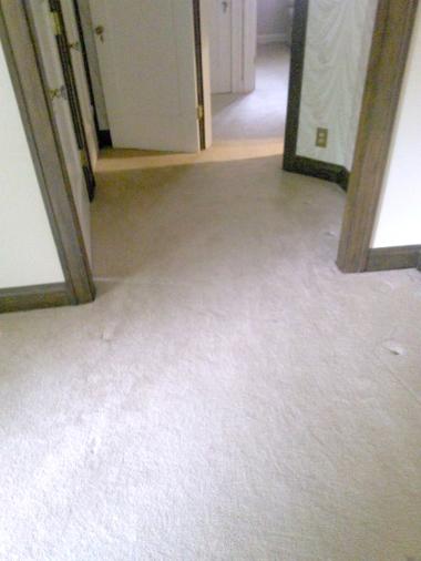 bl-carpet-installations